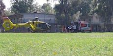 Rettungs-Heli wegen Notfalls im Gänsehäufel gelandet