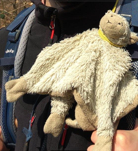 """Die kleine Alma (2) liebt ihr Stoff-Schaf """"Mäh"""" über alles. Nachdem es auf einem Spielplatz in Rudolfsheim-Fünfhaus verloren ging, bittet Mama Annika R. nun via """"Heute"""" um Hilfe."""