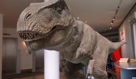 """Am Freitag erschien ein Dino in der """"Heute""""-Redaktion."""