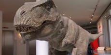 """Wieso knurrt hier ein T-Rex in der """"Heute""""-Redaktion?"""