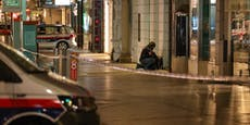 Koffer löste in Linzer City Bombenalarm aus