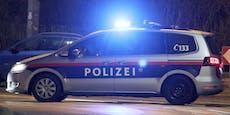Massenschlägerei zwischen 15 Personen am Reumannplatz