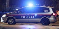 Einbrecher-Duo auf frischer Tat ertappt