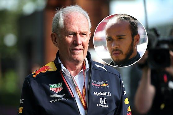 Helmut Marko, Lewis Hamilton