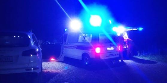 Bergrettung und Rotes Kreuz wurden wegen des Schlangenbiss auf der Hinteralm alarmiert