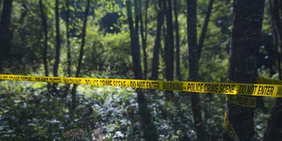 Schrei-Therapie im Wald endete mit einem Polizeieinsatz