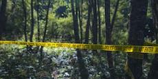 Schreie im Wald sorgen für kuriosen Polizeieinsatz