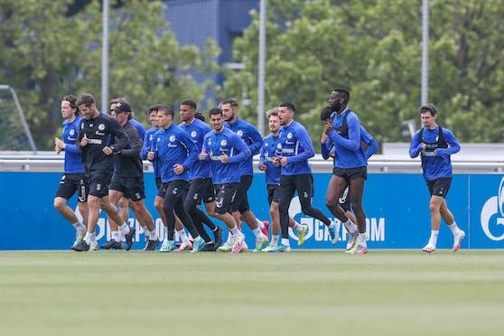 Schalke Training Heute