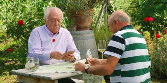 Häupl und Pröll beim Kartenspielen im Weingarten