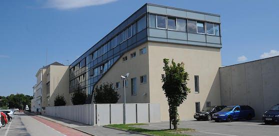 Das Duo sitzt in der Justizanstalt Wr. Neustadt in Haft.