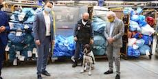 Spürhunde erschnüffeln Drogen-Post