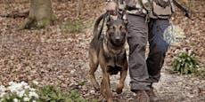 """Toter Hundeführer – War es """"der Wolf im Hund""""?"""