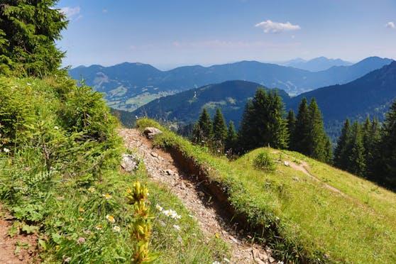 Ein Wanderweg am Pürschling in den oberbayrischen Alpen bei Oberammergau