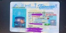 Frau erhält Führerschein – mit einem Sessel als Bild