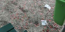 Ärger über Hochzeits-Müll am Schlossberg