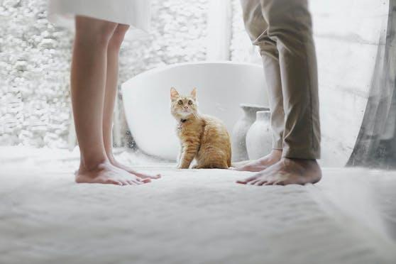 """""""Viele Haustierbesitzer empfinden ihre Haustiere als Familienmitglieder und oft als die zuverlässigste 'Bezugsperson' in ihrem Leben"""", erklärt Parship-Psychologin Dania Schiftan."""