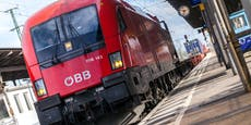 Fahrgäste schlugen ÖBB-Zugführer ins Spital
