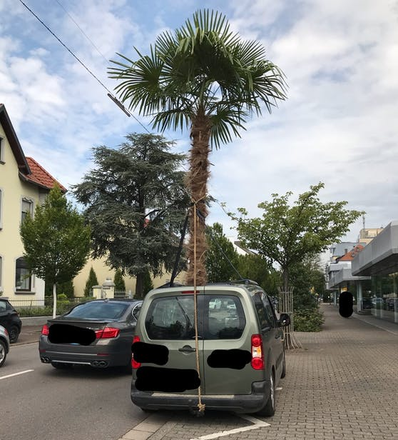 Dieser skurrile Transport brachte Polizisten in Saarlouis (D) auf die Palme