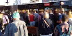 Ersatzverkehr in Wien sorgte für überfüllte Buslinie