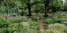 Jugendliche auf Friedhof gefoltert und vergewaltigt