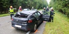 Auto von Baum getroffen, ein Verletzter