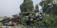 Auch Bub (11) bei Unwetter-Unfall unter Baum begraben
