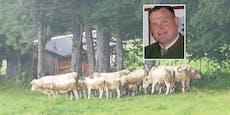 """Herde in Panik – Landwirt jagt jetzt """"Kuherschrecker"""""""
