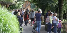 """Zu viele Besucher! Zoo nach Mega-Ansturm """"überlastet"""""""