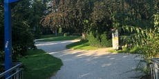 6-Jährige in St. Pöltener Park von Mann missbraucht