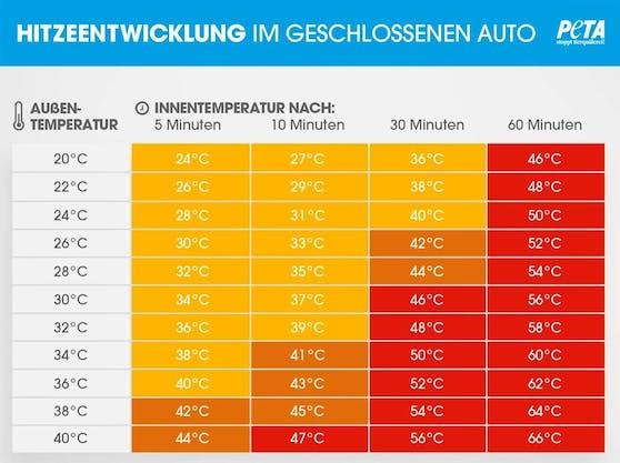 Hitze im geschlossenen Auto: Gefahr für Kinder und Tiere