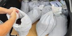 Regenwürmer-Zucht: Das macht man mit 20.000 Stück