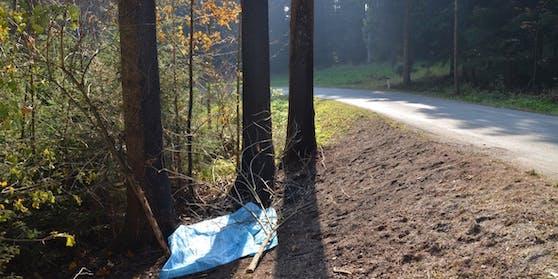 Die Unfallstelle im Bezirk Zwettl