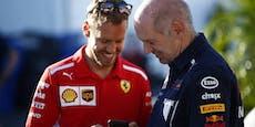 Entführt Vettel jetzt das Design-Genie von Red Bull?
