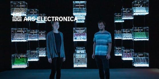 Die Ars Electronica 2020 war trotz der Corona-Krise ein voller Erfolg.