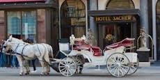 Luxus-Hotel Sacher kündigt140 Mitarbeiter
