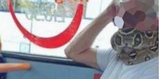 Statt Schutzmaske: Busfahrer trägt Schlange um den Hals
