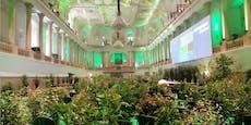 Hofreitschule wird für Klimakonferenz zum Wald