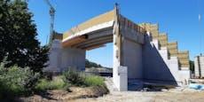 Bahn baut acht Meter hohe Brücke nur für Fledermäuse