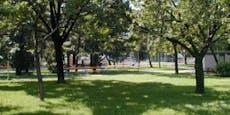 19-Jähriger in Wiener Park niedergestochen