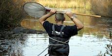 Feuerwehr rettet Fisch aus dem Wasser