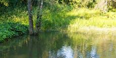 Mann (67) stürzt beim Pinkeln in Teich und ertrinkt