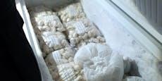 Erneut chinesische Teigtascherlfabrik ausgehoben