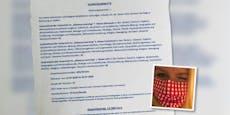 Wut-Mama verrechnet Minister 13.300 € für Homeschooling