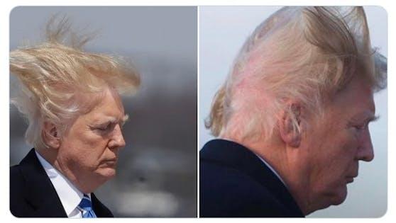 """""""Der größte Verbrecher in der Geschichte der USA ist, wer auch immer Donald Trump 70.000 Dollar abgeknöpft hat, um seine Haare zu machen."""""""