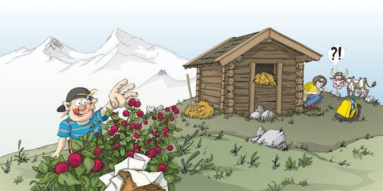 Alpenverein startet Kampagne rund um Toilettengang am Berg