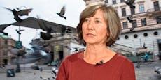 Tierschützer: Grüne Tauben-Spitäler in Wien nicht nötig