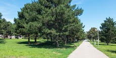 14-Jähriger in Wiener Park brutal attackiert