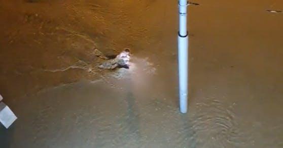 Dieser Wiener nutzte die überschwemmte Straße als Freibad