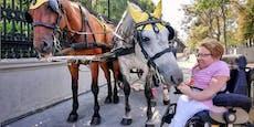 Insta-Fotografin zeigt Wien aus Rollstuhl-Perspektive