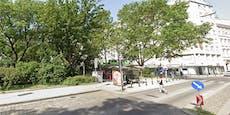 Prügel-Teenies terrorisieren Wiener Park und Polizei